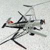 Das Bild zeigt den ersten Hubschrauber