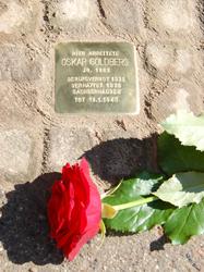 Das Bild zeigt einen Stolperstein von Oskar Goldberg der den Nazis zum Opfer fiel